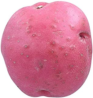 Potato Red Conventional, 1 Each