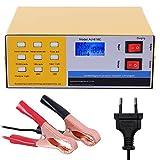 GreenRibbon 12V/24V Chargeur de Batterie Intelligent Automatique Pulse Réparation Mainteneur 10A...