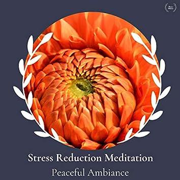 Stress Reduction Meditation - Peaceful Ambiance
