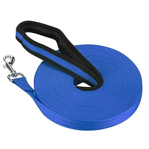 Vivifying Schleppleine für Hunde, 20M Lange Nylon Hunde Trainingsleine mit Handschlaufe zum Ausführen und Trainieren von Gehorsam für Haustiere (Blau)
