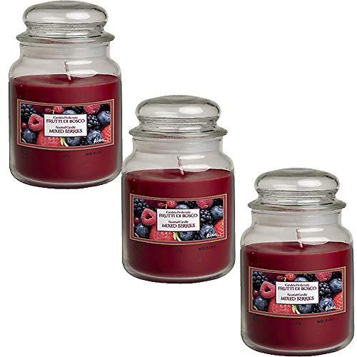 Palucart Candele profumate in Giara Grande Set da 3 Candele profumate Relax Candle (Frutti di Bosco)