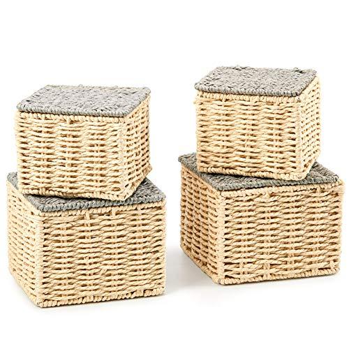 EZOWare 4er Set Aufbewahrungskörben aus gewebtem Papierseil, Mehrzweck-Organisationsboxen mit Deckel, Perfekt für die Aufbewahrung von kleinen Haushaltsgegenständen - Beige & Grau