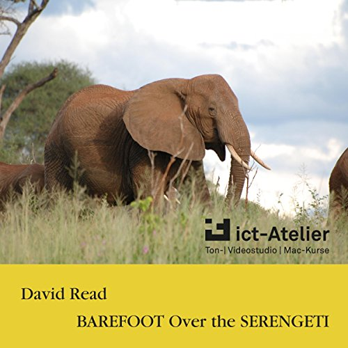 Barefoot over the Serengeti audiobook cover art