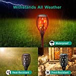 Nekteck Outdoor Torch Light with Star Design, Flickering Dancing Flames, Waterproof Solar Powered LED Landscape Decoration for Yard Pool Patio Garden Pathway Walkway 4 Pack Withstands all weather
