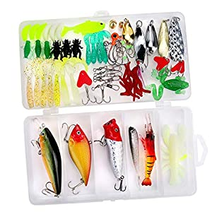 Fishing Lures Kit – Ultimate Bass Lure Kit – Bass Lure Kit for Ocean, Lake, Pond, River and Stream Fishing – Realistic Lure Kits – 77pc Bass Jig Kits with Tackle Box – 6 Types of Bait