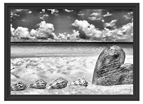 Picati zandstrand met schelpen in schaduwvoegen fotolijst   kunstdruk op hoogwaardig galeriekarton   hoogwaardige canvasfoto alternatief 55x40