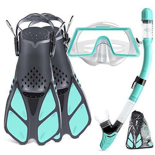 Snorkel SetAdult,Snorkeling Set with Panoramic Snorkel Mask Diving Goggles,Dry Top Snorkel and Adjustable Fins,Scuba Diving Snorkeling Maskfor Men Women