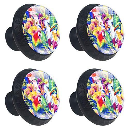EZIOLY - Juego de 4 pomos de cristal con forma de círculo de loros de acuarela con flores tropicales para armarios, cajones y cajones, con tornillos para el hogar, oficina, cocina, cuarto de baño, vestidor y armario
