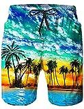 Maillot de Bain Homme Hawaïen Short de Bain à Séchage Rapide Imprimer Waterproof Sports Swim Trunks S