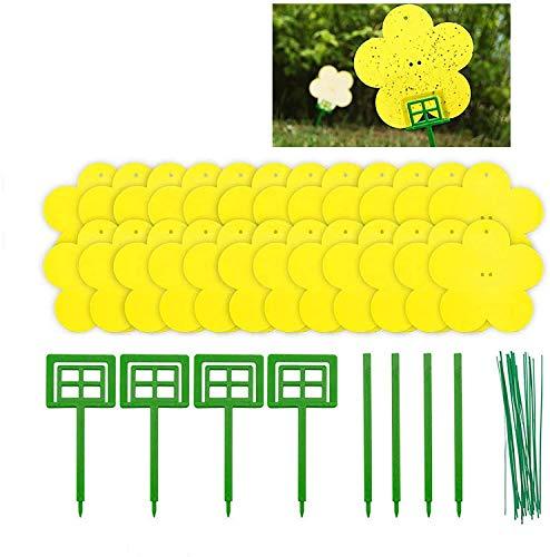 zyh Paquete de 24 trampas para Hongos pegajosas en Forma de Flor para Moscas de Plantas Incluidas para Moscas de Plantas como Mosquitos de Hongos,pulgones,Moscas Blancas,mineros de Hojas