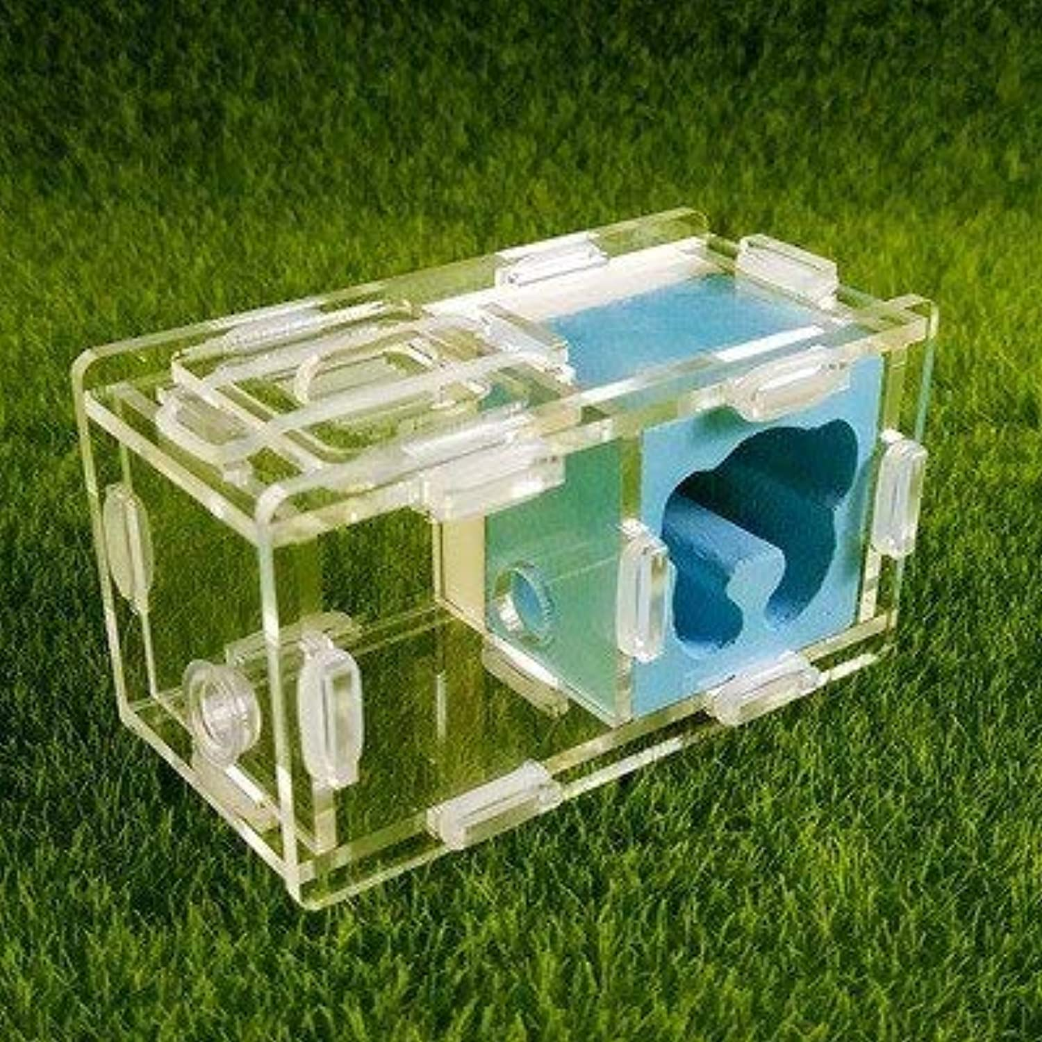 KDGPUM New Design Ant Nest DIY with Feeding Area Ant Farm Acrylic Plaster Villa Pet Mania for House Ants Insect Ant Workshop   09