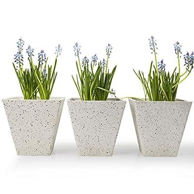 Amazon - Save 50%: Flower Plant Pots Indoor Planters – 5.5 Inch Speckled White Garden…