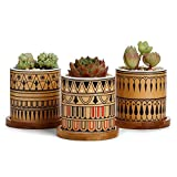 Greenaholics Succulent Plant Pots - 3 Inch Cylinder Greek Sytle Ceramic Planter for Cactus, Succulent Planting, with Drainage Hole, Bamboo Trays, Set of 3