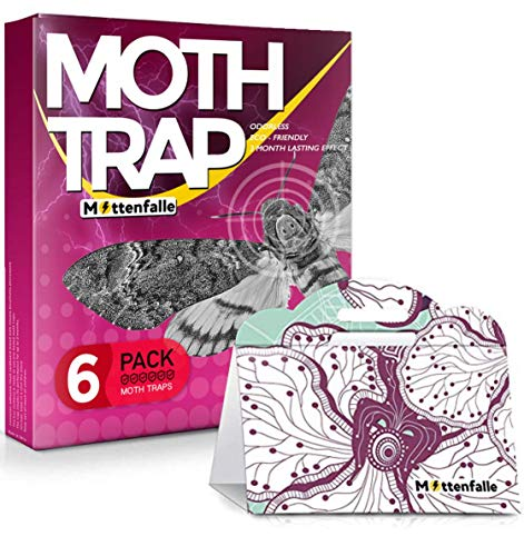 Mottenfalle Clothes Moth Traps 6-Pack - Prime Safe Non-Toxic Eco-Friendly Moth Traps with Pheromones Sticky Adhesive Tool for Wool Closet Carpet - with no Pesticides and Insecticides (Red)