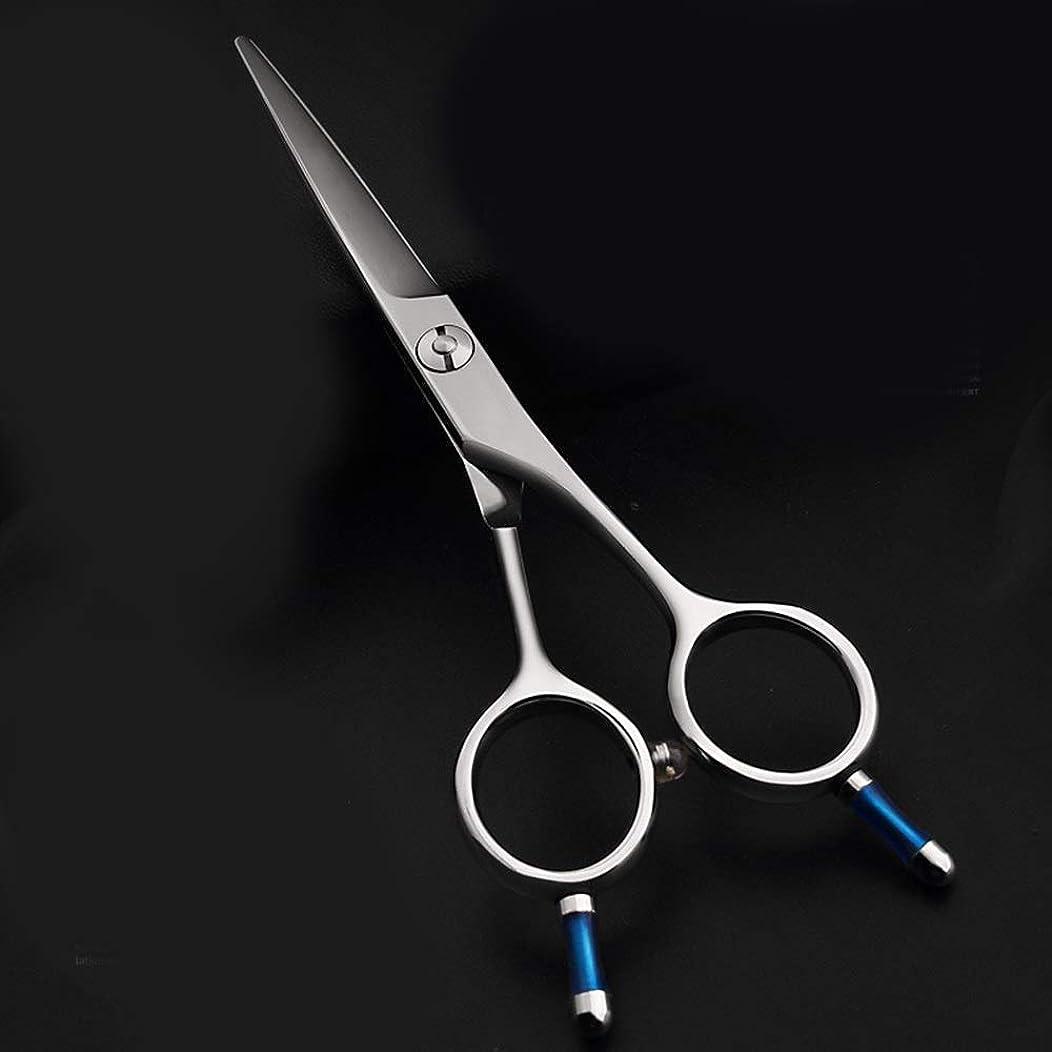 着飾る破裂注入する5.5インチの理髪はさみ、440 CプロフェッショナルAワードせん断、美容院特別左利き利用可能な理髪はさみ モデリングツール (色 : Silver)