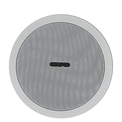 HGVVNM Amplificador de clase D digital integrado resistente al agua Altavoz de techo Bluetooth 10w Altavoz activo de 5 pulgadas para reproducción de música en interiores