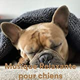Musique Relaxante Pour Chiens