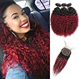 Feelgrace Ombre Burgundy Kinky Curly Human Hair Extension Bundles with Closure (4X4 Swiss Lace, Free Part) 100% Brazilian Remy Human Hair Extensions Bundles with Closure (10 12 14 with 10)