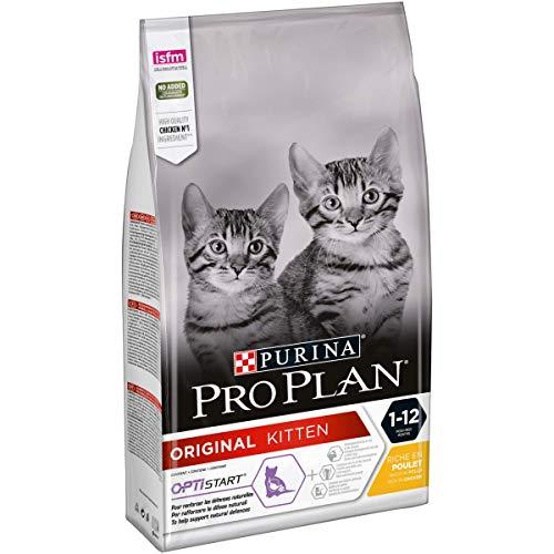 PURINA PRO PLAN ORIGINAL Kitten Katzenfutter trocken mit OPTISTART, reich an Huhn, 1er Pack (1 x 1,5kg)