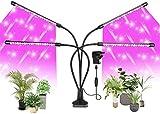 HSY SHOP Grow Light, LED Plant Lighting 40W Función de Temporizador Regulable USB UV Lámparas de Cultivo para Plantas de Interior Invernadero Hidroponía Jardinería Oficina