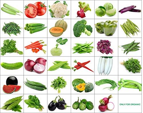 Best organic seeds
