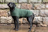 Dog & Field™ Duel Layer Towelling Dog Coat (Olive Green) - Microfiber Lined Fleece Pet Drying Jacket XS - XL Sizes (L)