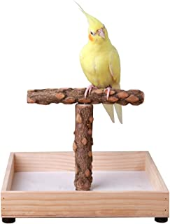 Best bird table top play stands Reviews
