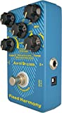 Immagine 2 aural dream fixed harmony guitar