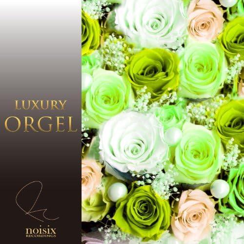 Luxury Orgel