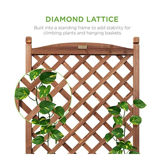 Best choice products 60in wood planter box & diamond lattice trellis, mobile outdoor raised garden bed for climbing… 3 diamond lattice: a 60-inch trellis is woven in a tight, diamond pattern to provide structural support and plenty of space for climbing plants planter box: fill the 10-inch deep box with your favorite potted plants and a water-resistant liner (not included) or a fresh soil bed thanks to built-in drainage holes optional wheels: a set of 4 included wheels can easily attach for added mobility and come with two locks for stability