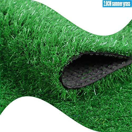 CarPET Kunstrasen, Verschlüsselung Gras Teppich 20mm Flor for Hohe Dachisolierung Und Sonnenschutz Kunstrasen YNFNGXU (Size : 2x5m)