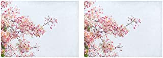 HUAPIN Placemats Blossom Cherry Tree Branches Table Mats Set of 2 Non-Slip Washable Coffee Mats Heat Resistant Kitchen Tablemats for Dining Table Indoor Outdoor14'' X 19''(35x48cm)