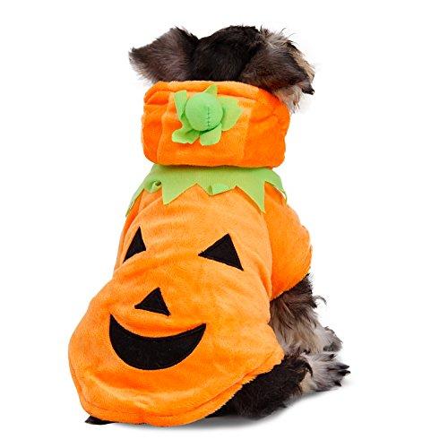 PAWZ Road Hund Katze Halloween Kürbis Kostüm Haustier Cosplay Warmer Hoodie Mantel für kleine bis mittlere Hunde M