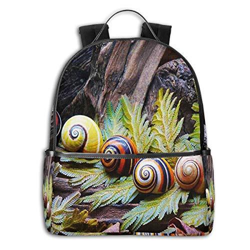 Schulrucksack Schultaschen Mädchen Teenager Rucksack Schultasche Schulrucksäcke wasserdichte Backpack für Damen Herren Geeignet für 14 Zoll Notebook Farbe Schneckenhäuser