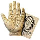 Fantasy Gifts Palmistry Hand Kit: Halloween Holiday Prop Includes 15-Page Booklet