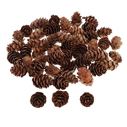 Perfeclan 60 Pièces Déco Nature Mini Pommes de Pin