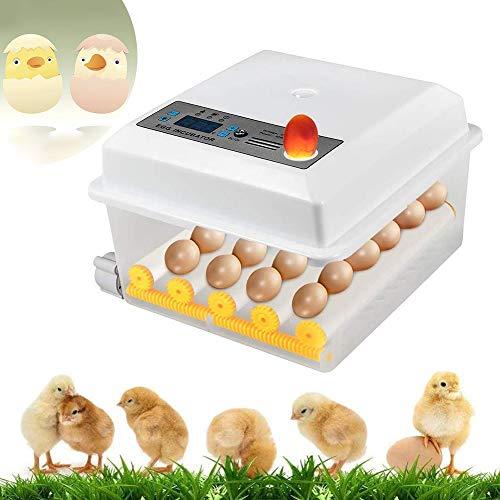 InLoveArts digital Ei-Inkubator 16 Eier Automatischer Brutapparat für den Heimgebrauch, Temperaturregelung und automatisches Drehen für mehrere Eigrößen