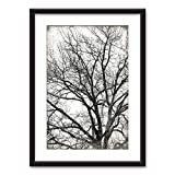 wall26 - Framed Wall Art - Tree in Black White on Vintage Background - Black Picture Frames White Matting - 23x31 inches