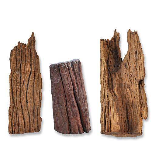 Wurzel Mangrovenwurzel Holz Treibholz für Terrarium Aquarium Zubehör Garten Deko Reptilien Echtholz 30-50 cm 100% Natur *Alles Einzelstücke*