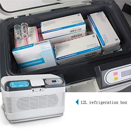 Refrigerador 2-8 Grados De Temperatura del Termóstato del ...