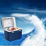 LYJ Mini Réfrigérateur De Voiture à Double Usage(réfrigération Et Chauffage),...
