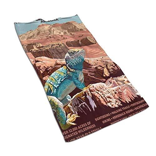 JULOE Parque Nacional del Bosque Petrificado - Arizona Toallas de Cocina-Paños de Cocina Toalla Deportiva de Secado rápido, Toalla para el Cabello 27.5X15.7in