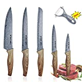 Knife Set, HOBO Professional Kitchen Knife Set, Stainless Steel Finish, Includes Chef Knife, Bread Knife, Carving Knife, Utility Knife and Paring Knife (5 Pieces)