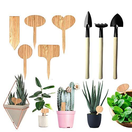Plant Labels 50PCS Etiquetas de Madera para Plantas de bambú, 1 Paquete Kit de jardín Juego de Herramientas para jardín de Hierbas Interior al Aire Libre, Semillas Hierbas en macetas