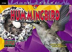 Hummingbird (Life Cycles)