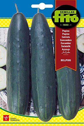 Semillas Fitó 237 - Semillas de Pepino Bellpuig