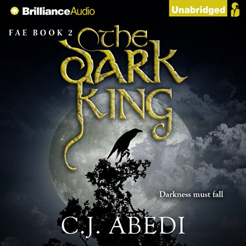 Couverture de The Dark King
