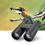 WYJW Binocolo Portatile 10X42 ad Alta Potenza con Chiara Visione Chiara - Lente Bak4 Prism, FMC Multi-Rivestito - Binocolo antiappannante per Il Birdwatching