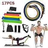loozykit 11/17 Pcs Resistance Bands Widerstandsband Set Fitnessbänder Set Fitnessband Gymnastikband mit Türanker Griffen Knöchelriemen für Ganz-Körper-Workout Yoga Pilates Fitness (17 Pcs)