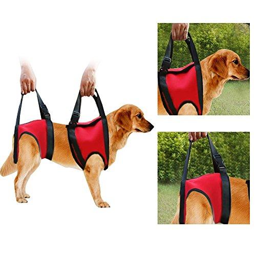 Filfeel Soporte para Perros Arnés Pet Walking Ayuda Lifting Pulling Vest Sling Support Rehabilitation para Perros Viejos y heridos(Pata Delantera - L-Rojo)